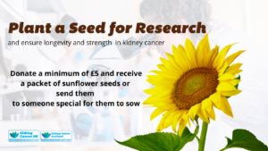 plant-a-seed-banner